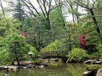 Anderson_gardens