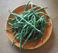 Fortex_green_beans